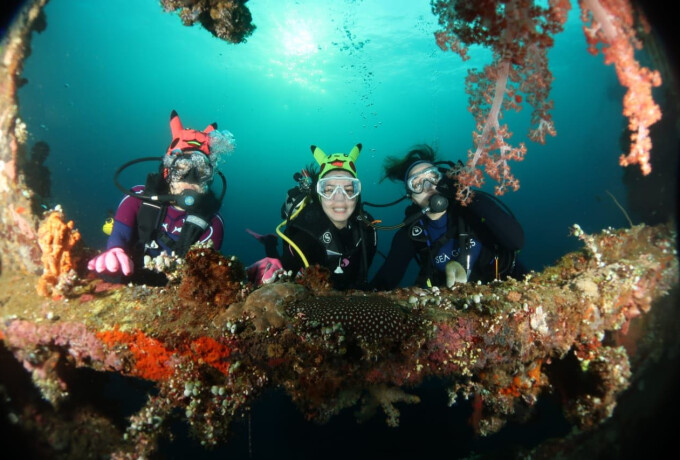 Scuba Diving Intro Beginner - Watersport Bali