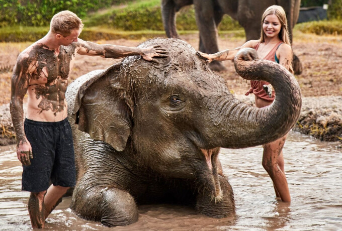 Bali Zoo - Elephant Mud Fun ( Morning Session 1)