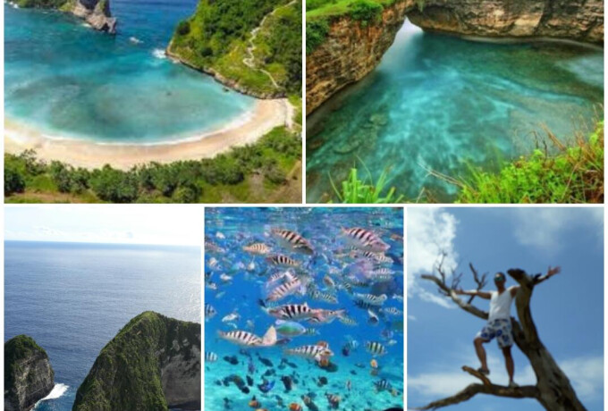 1 Day Trip at Nusa Penida Jungle Island